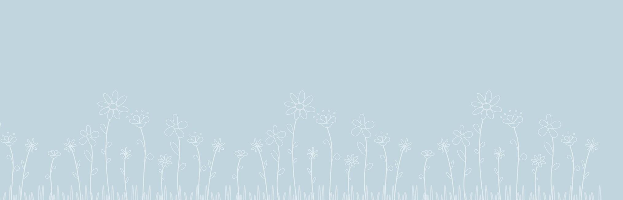 Catnapweb web design and SEO - blue background